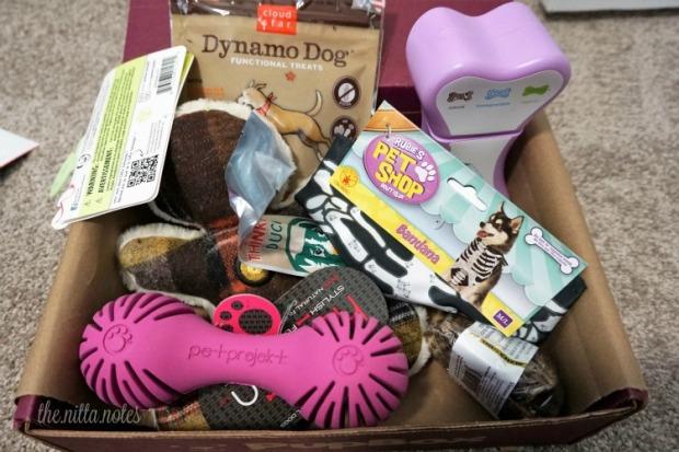 Pupbox Oct (2)
