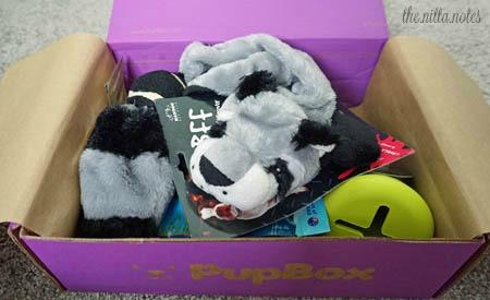 PupBox 3